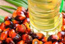 CRUDE PALM OIL at whole sales prices