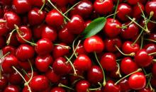 Fresh Dark Red Cherries