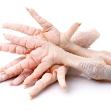 Chicken Frozen Feet and Paws for wholesale