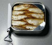 Fresh Production Excellent Quality Canned Sardine in Brine