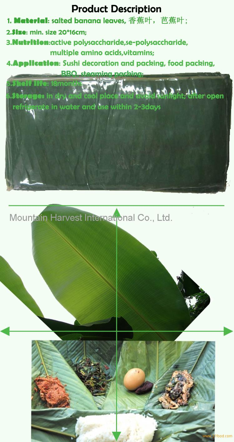 <strong>Fresh Banana Leaves</strong> Description