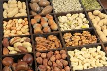 Nuts - Dried, Roasted and Salted