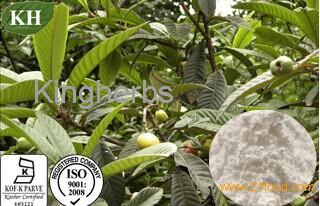 Ursolic Acid 25%~98% by HPLC
