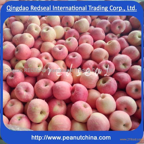 2015 crispy Fuji apple