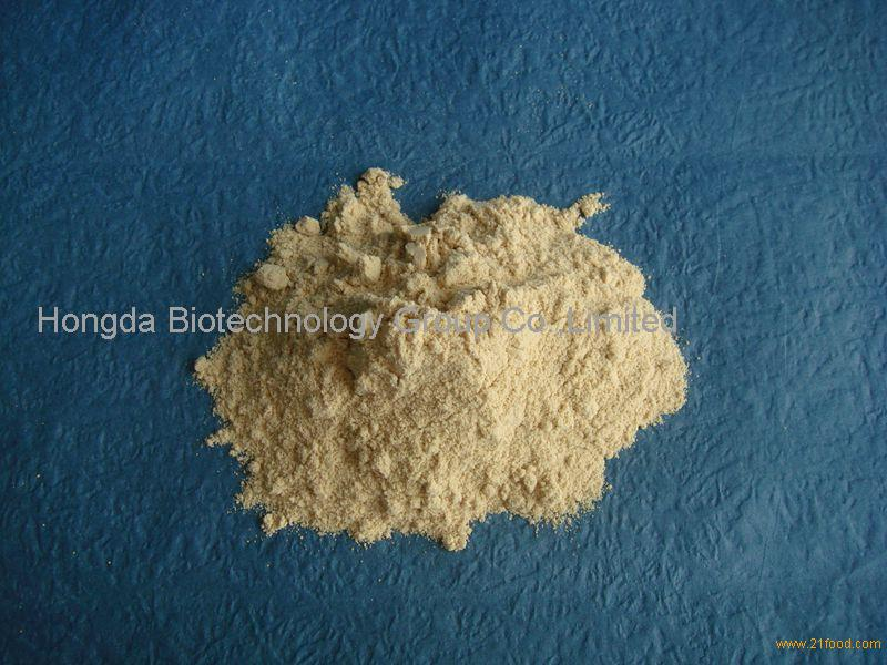Pea Protein Concentrated Manufacturer