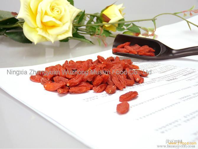 Dried Goji Berry Supply from Ningxia, China products,China Dried Goji Berry Supply from Ningxia, China supplier670 x 503 jpeg 39kB