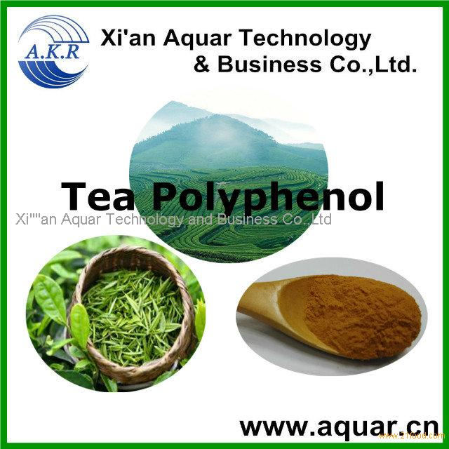 Green tea extract/P.E powder(Tea Polyphenols,)