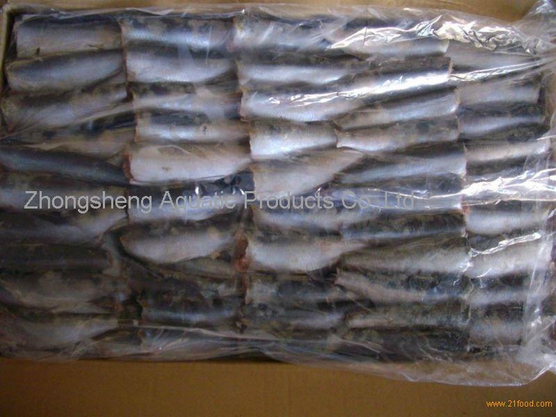 HGT sardine