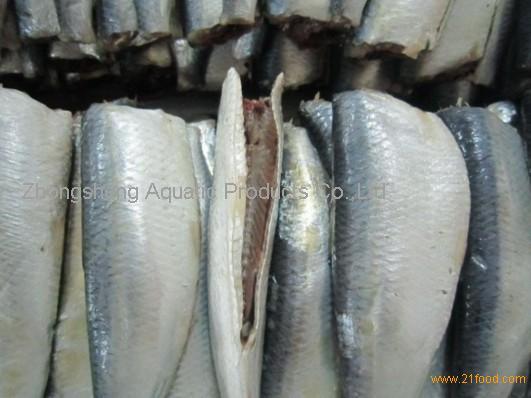 sardine fish hgt