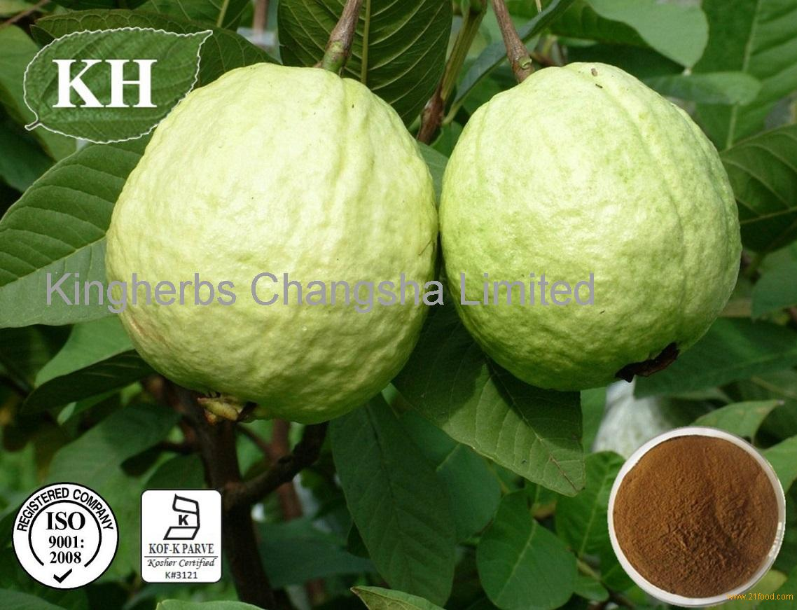 guava leaves and carrot extract as Find great deals on ebay for guava leaf extract shop with confidence.