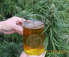 RICK SIMPSON Oil,
