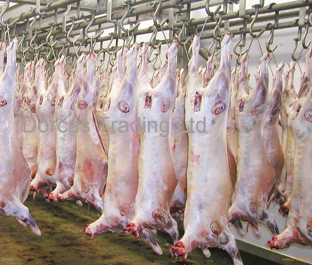 Halal 6 Cuts Lamb Meat Mutton Goat And Boer For Sale