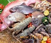 Fish & Seafood,Surimi,Shrimp,Shellfish,Seaweed,Roe Sea Cucumber,Mollusks,Crab for sale now