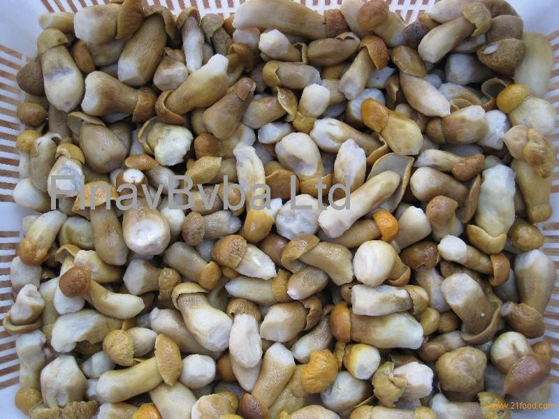 Buy boletus mushrooms