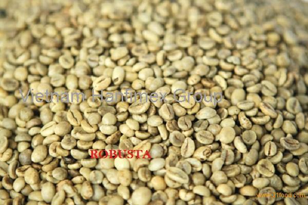 Vietnam Robusta Coffee Green Bean S16(FAQ/Clean/Wet Polished) Seller