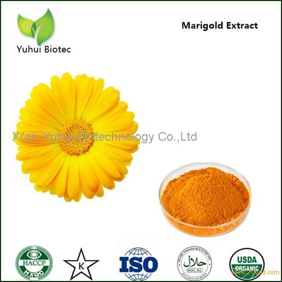 marigold flower extract,marigold flower extract lutein,marigold extract lutein