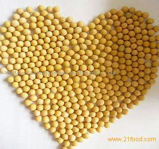 Chinese First Grade Non-GMO Yellow Cheap Soybean for Food