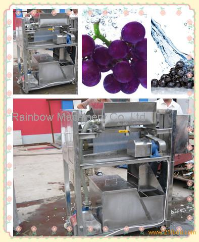 Stainless Steel Fruit Cleaning Machine