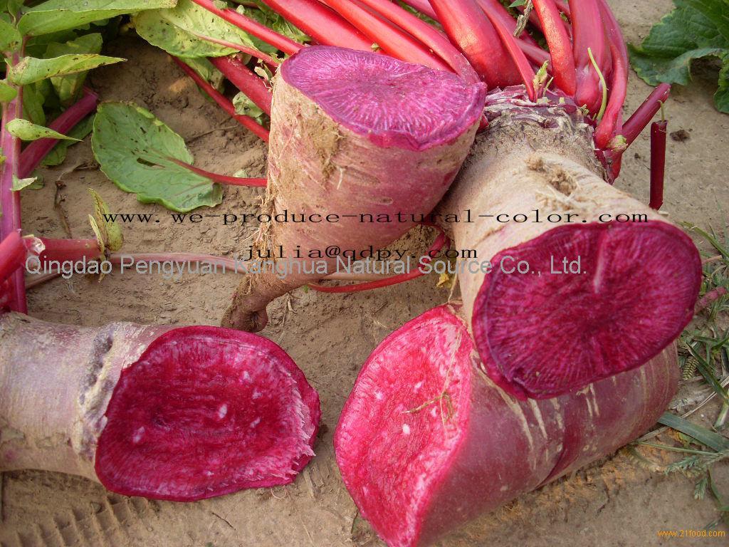 Pigment producer radish red
