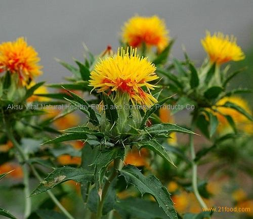 how to make safflower oil