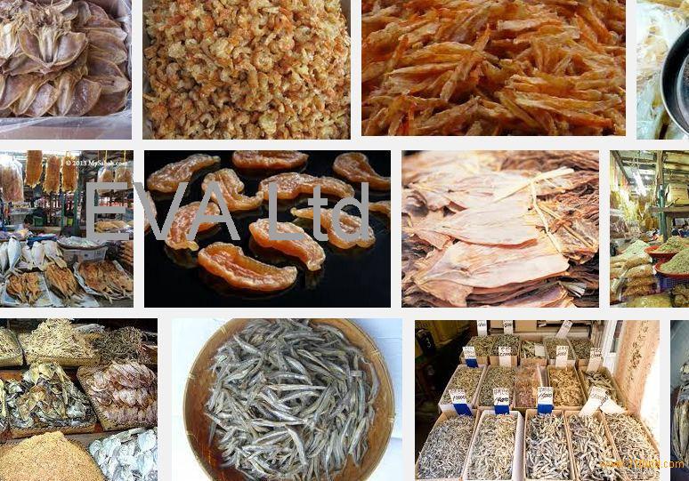 fish,frozen grouper,frozen silver pomfret,hilsa fish,sardin,ribbon ,ell ,queenfish,fish,fish,salmon,