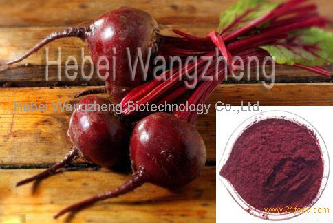Red Beet Root Extract Beet Red
