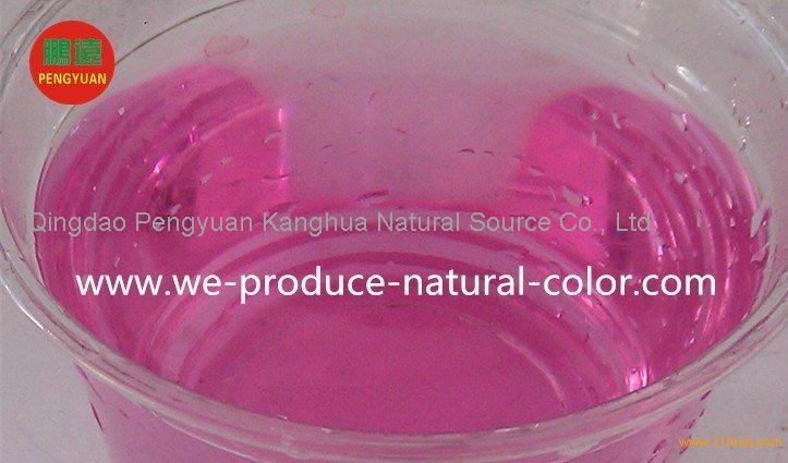 liquid or powder cabbage red natural pigment
