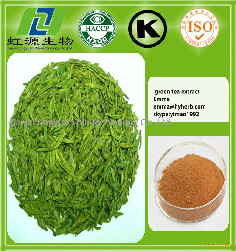 Water Soluble Instant Green Tea Powder