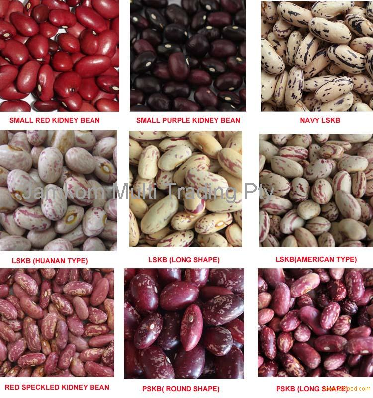 Red Kidney Beans for Sale from South Africa Gauteng , Red Kidney