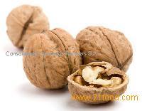 Walnuts nuts for sale