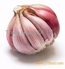 Garlic Type and Liliaceous Vegetabless Product Type natural garlic fresh garlic