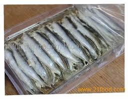 FROZEN BLUE ANCHOVY WHOLE ROUND