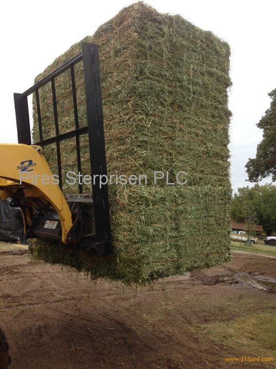 Hay products,Ukraine Hay supplier540 x 720 jpeg 79kB