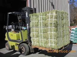 High Protein Alfalfa Hay/Wheat Bran/Wheat Straw/Timothy Hay