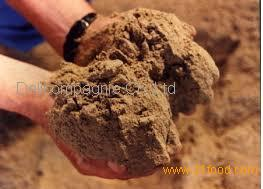 Fish meal products ukraine fish meal supplier for Menhaden fish meal