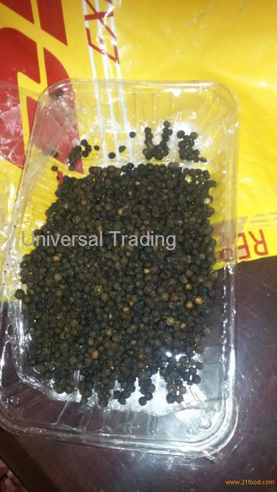 BLACK PEPPER for sale.