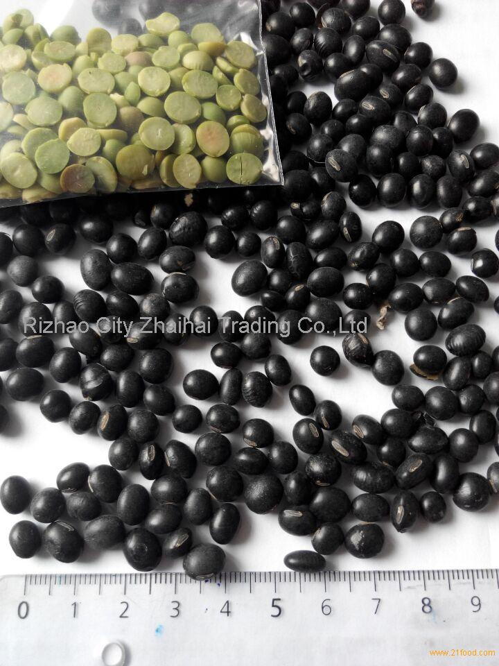 BLACK KIDNEY BEANS WITH GREEN KERNEL