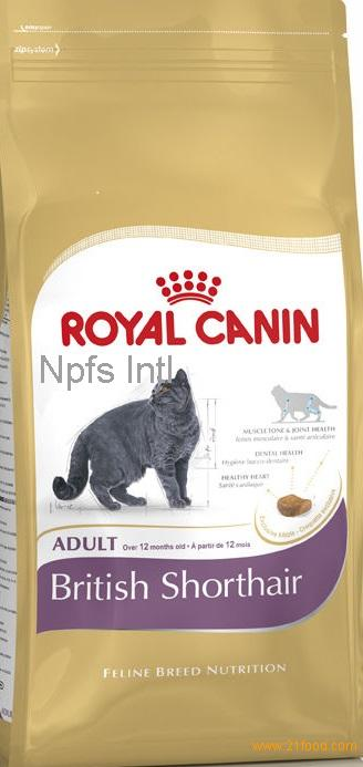 royal canin british shorthair dry cats food products ukraine royal canin british shorthair dry. Black Bedroom Furniture Sets. Home Design Ideas