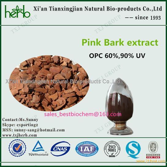 Food additive pine bark extract