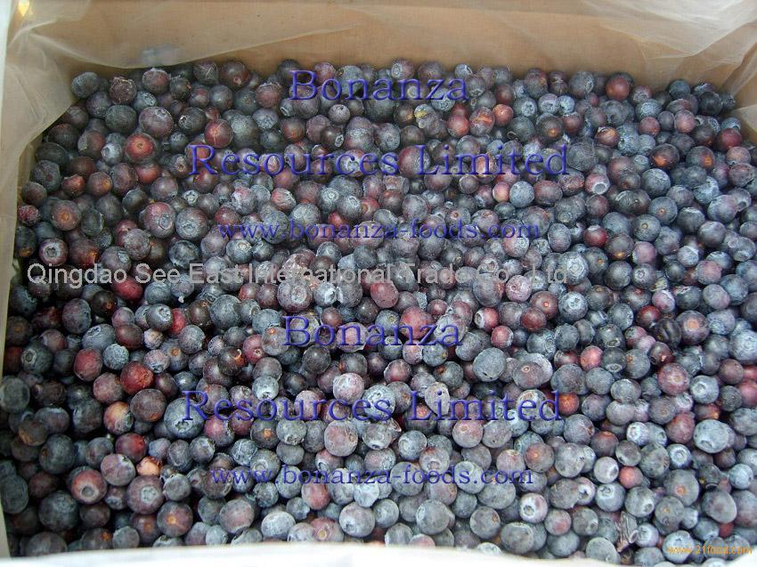 Frozen Blueberry a