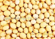 Best Quality Frozen Soybean kernels