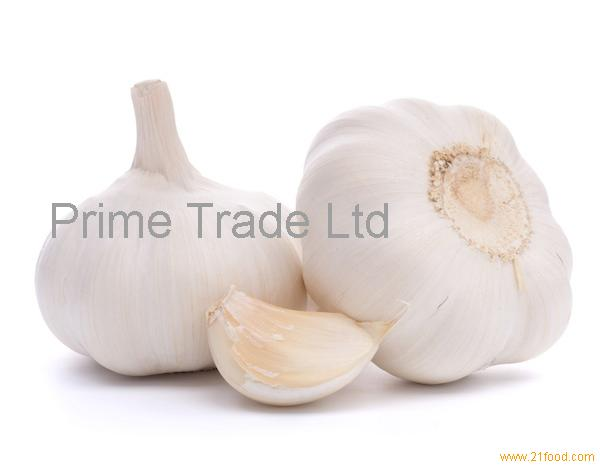 how to grow garlic in kenya