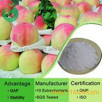 how to use freeze dried fruit powder
