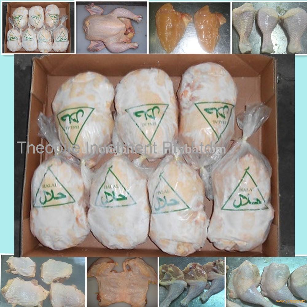 halal whole frozen chicken / frozen chicken brand