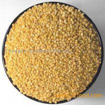 High Quality Green Mung Beans Promotional Price