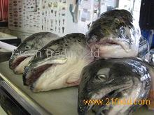 Fish Head and Bones from Cod, Saithe ,Haddock , Tusk and ling,
