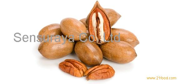 Pecan Nut In Shell, Wholesale Pecan Nuts