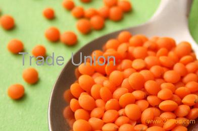 Lentils And Long Red Kidney Beans Products Denmark Lentils