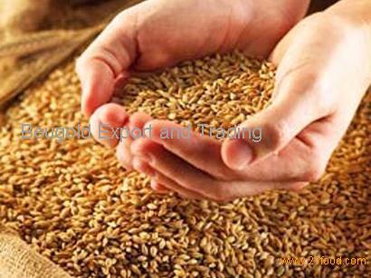 100% natural Flax seeds