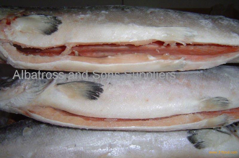 Frozen Atlantic Norwegian Salmon